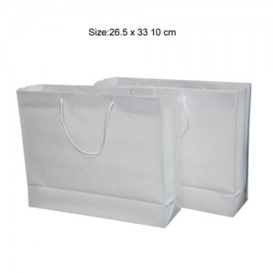 Frosty-PP-Bag-NPP3326-14