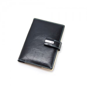 Passport-Holder-ABEX1054-210