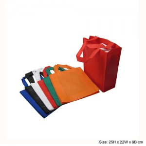 80g-Non-Woven-Bag-NSB2522-8
