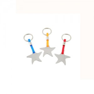 Sea-Star-Metal-Keychain-AHKY1009-24